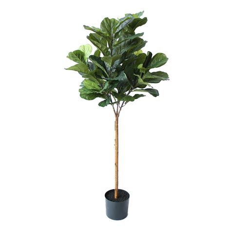 fiddle fig tree artificial fiddle leaf fig tree 1 5m with 89 large leaves