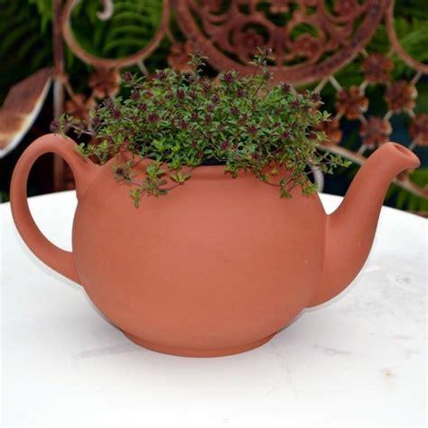 Large Teapot Planter by Teapot Planter Terracotta Various Sizes Weston Mill