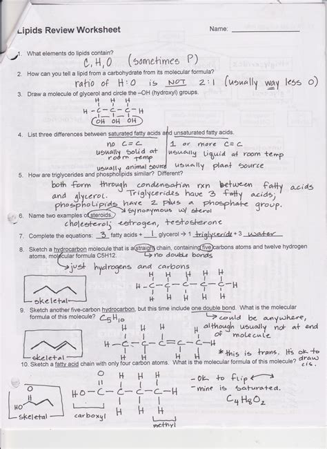 carbohydrates review worksheet carbohydrates carbohydrates review worksheet
