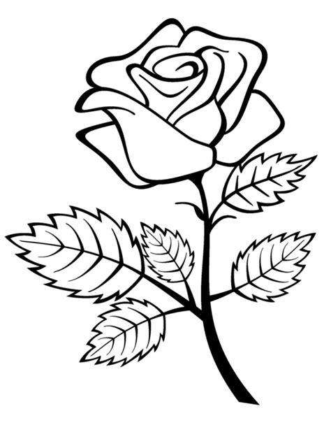 come disegnare fiori disegnare fiore