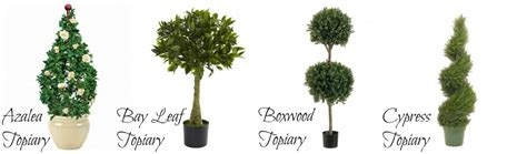 types of topiary trees buyer s guide to artificial topiaries