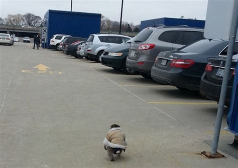 ikea parking lot markosun s blog anything and everything anytime page 149