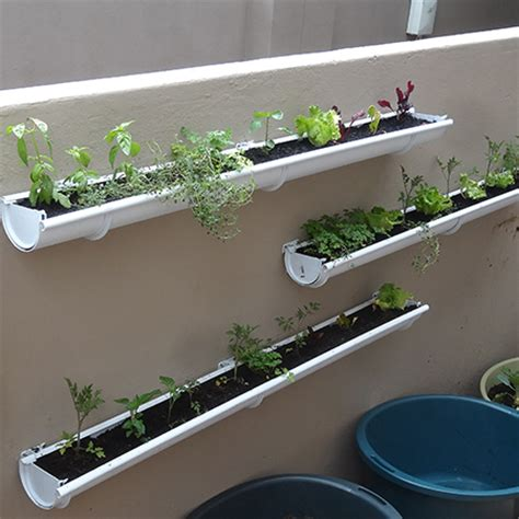 wall mounted herb garden home dzine garden ideas adding a herb and veggie gutter