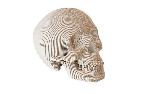 Laser Cut Skull Template Cardboard Safari Cardboard Skulls