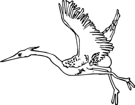 migratory birds coloring pages crane bird netart