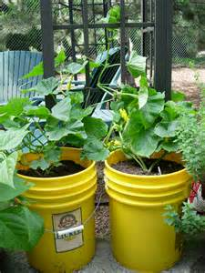 spring gardening tip 2 gardening with containers growinggardens blog