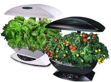 Indoor Hydroponic Gardening Tips   Hydroponics Equipments