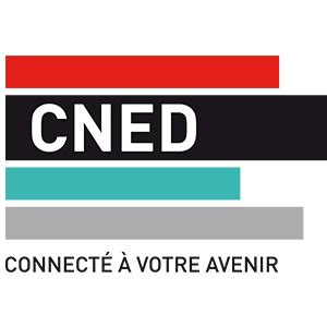 cned excellence consulting