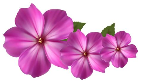 free floral images pink flower images cliparts co