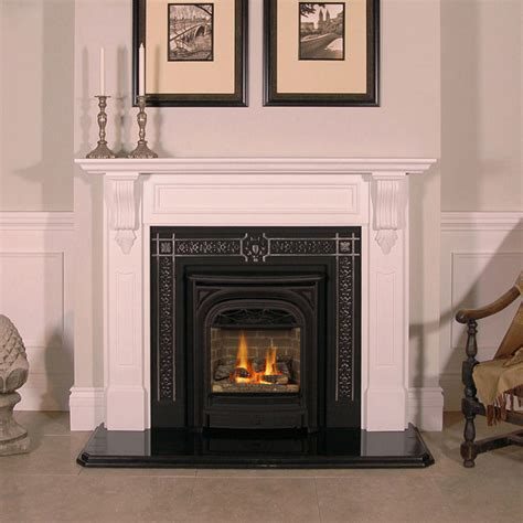 Gas Inserts For Existing Fireplaces Heavenly Property For Fireplace