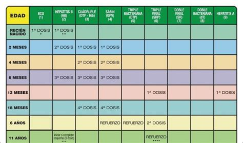 Calendario De Embarazo 2010 Embarazo Calendario De Vacunacion