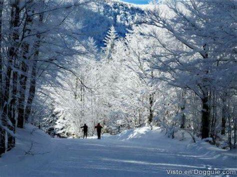 imagenes de invierno bellas imagenes hermosas de invierno im 225 genes taringa