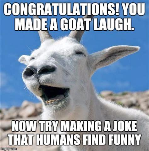 Funny Congratulations Meme - laughing goat memes imgflip