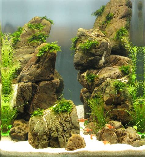 Aquascape Aquarium by Nano Aquascapes Aquascaping Aquarium