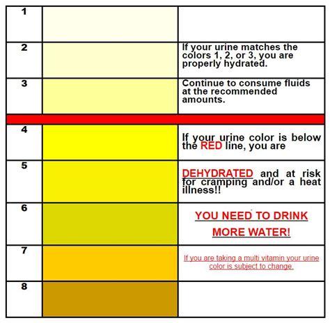 hydration urine color chart hydration stratford schools