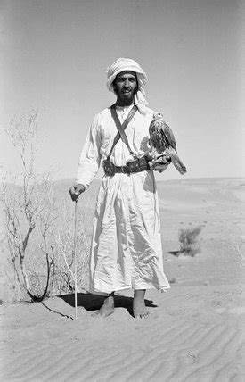 sheikh zayed with falcon by wilfred patrick thesiger at
