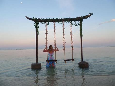 swings on the beach beach swings a way to heal all your woes trends4us com