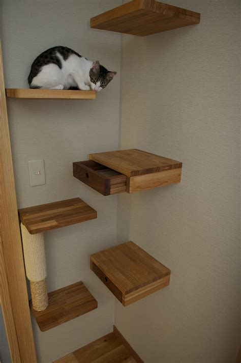 modern cat furniture design ideas wall mounted and heated cat beds and cats on pinterest idolza
