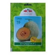 Benih Melon Madesta F1 benih selada romaine 5 gram known you seed