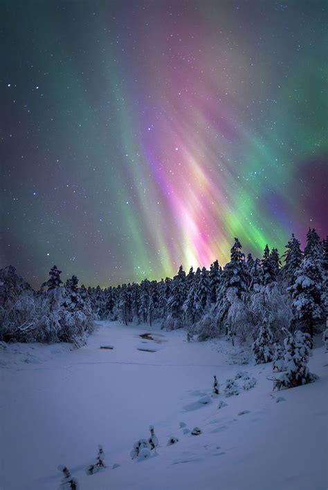 winter images best 25 winter ideas on winter