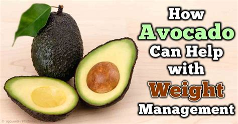 management of weight loss how to lose weight with avocado