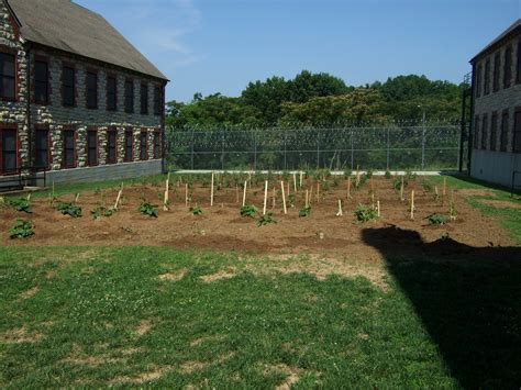Garden Center Jefferson City Mo Prisoners Give Back To Society Through Fresh Produce And