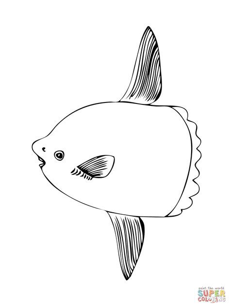 sunfish coloring page sunfish coloring page free printable coloring pages