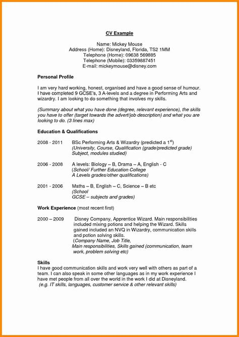 profile on resume resume profile examples for highschool students