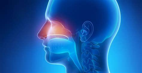 naso chiuso e mal di testa naso chiuso cause sintomi e cure raffreddore