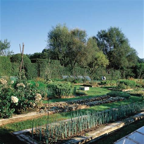 como tener un jardin en casa c 243 mo tener un huerto en tu terraza o balc 243 n