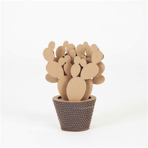 Kerang Pajangan Cangkang Kerang Loklak Untuk Hoby Dan Koleksi pajangan kaktus ini dapat membersihkan udara di ruangan casaindonesia