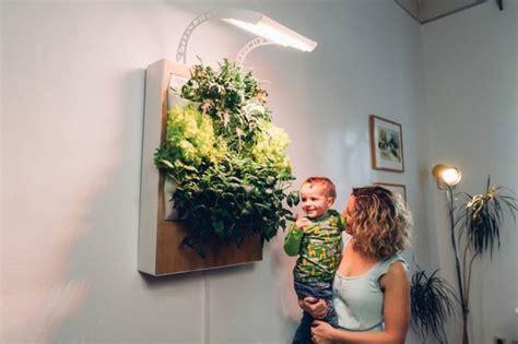 meet herbert  vertical hydroponic wall garden treehugger