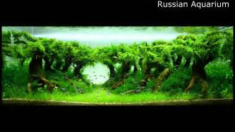 Aquascape Tanks Best World Aquascape Underwater Landscapes Awesome