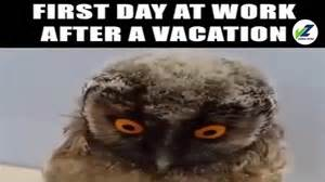day back to work after vacation be like this
