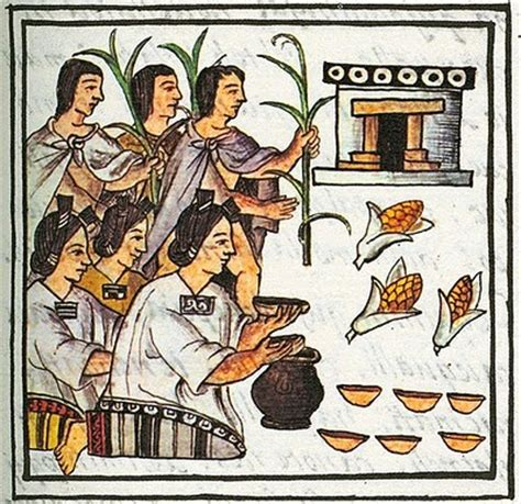 imagenes economia azteca aztecas econom 237 a socialhizo