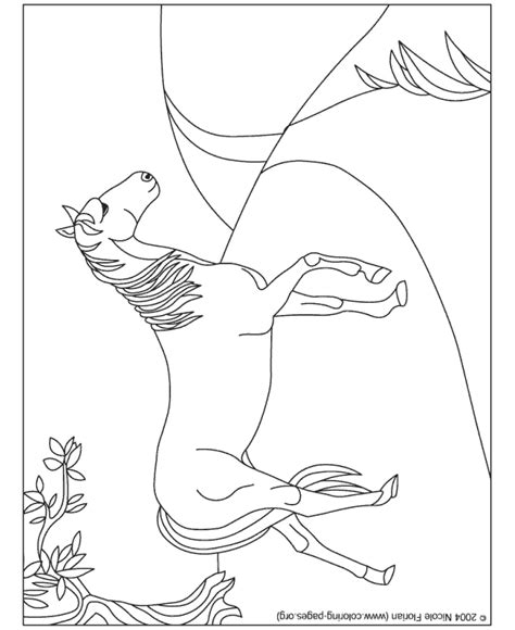 coloring pages of beautiful horses horse coloring pages beautiful horse