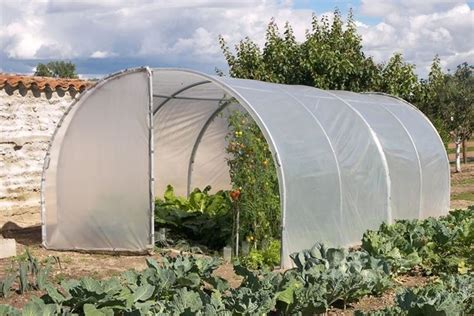 piccola serra da giardino costruire serre per ortaggi serre da giardino come