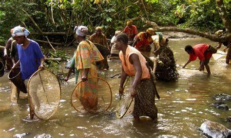 Listi Midi the congo basin provides food medicine water materials