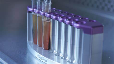 Serum Lyese cell isolation directly from whole blood without rbc lysis or centrifugation easysep direct