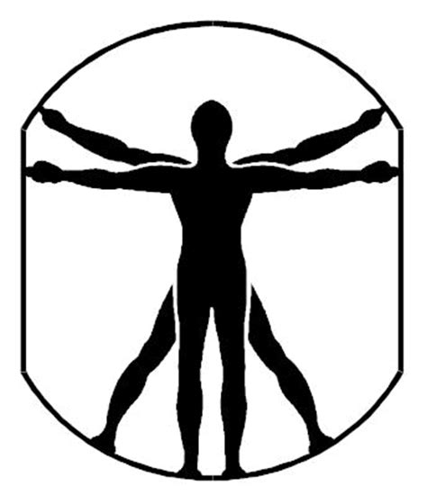 vitruvian man vector clipart best