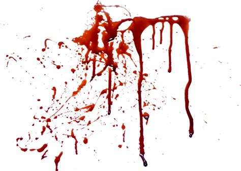 Blood Real In by Blood Png Images Free Blood Png Splashes
