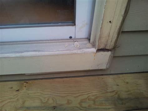 installing doors exterior pilotproject org