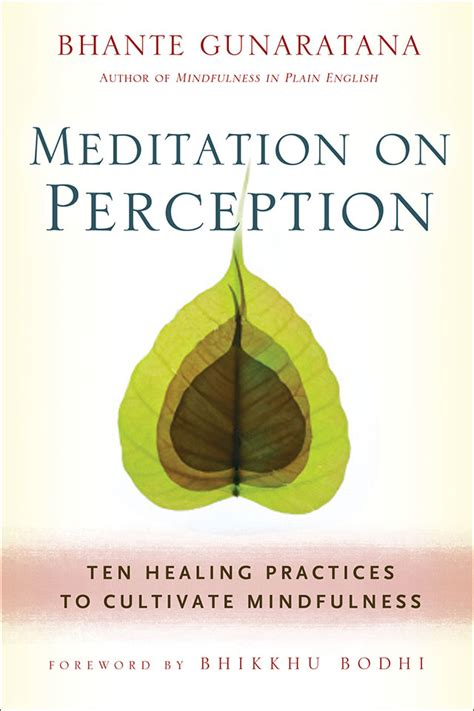 practical zen for health wealth and mindfulness books meditation on perception wisdom publications