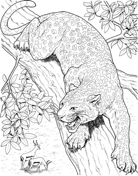 realistic tree coloring page free leopard coloring pages