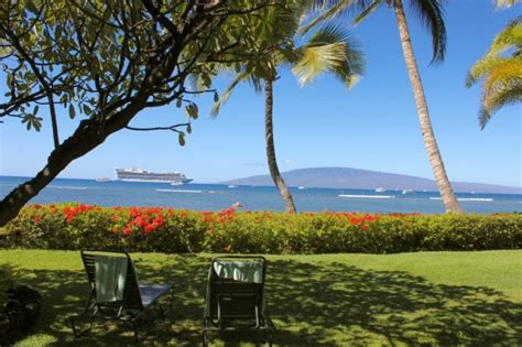 lahaina shores front desk direct beachfront vacation rental studio for sale at