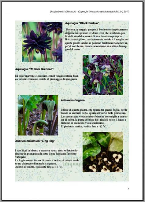 i fiori ebook ebook gratis quot un giardino in abito scuro quot piante con