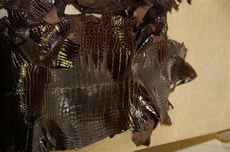 Leather Pelts Images Alligator Leather Wholesale Alligator Skins For