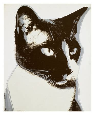 the colorful cats of andy warhol • hauspanther