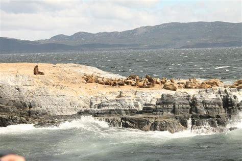 excursion catamaran faro excursi 243 n en catamar 225 n por ushuaia por el canal beagle