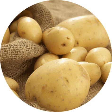 fucino on line vendita patate fucino spedizioni gratuite